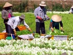 Khai thác và thương mại hóa sáng chế trong lĩnh vực công nghệ sau thu hoạch