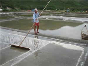 Muối Tuyết Diêm khó bán, giá thấp vì công nghệ sản xuất lạc hậu