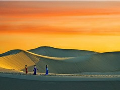 Vẻ quyến rũ của đồi cát đẹp bậc nhất Đông Nam Á ở ngay Việt Nam