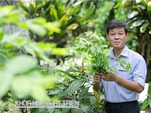 Người muốn biến Việt Nam thành vườn dược liệu