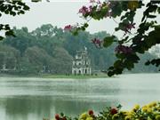 Không có phương án thay thế cây xanh trong dự án cải tạo hồ Gươm