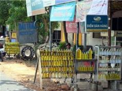 Thừa Thiên - Huế công bố quy chuẩn sản phẩm dầu tràm