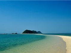 """Chiêm ngưỡng vẻ bình yên, thơ mộng của con đường biển """"độc nhất vô nhị"""" ở Việt Nam"""