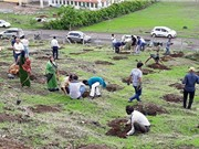 Choáng với màn trồng 66 triệu cây xanh trong nửa ngày ở Ấn Độ