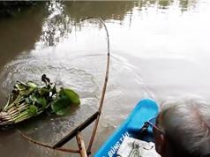 Clip: Cụ già 81 tuổi dùng bông lúa làm mồi nhử cá sông ở Hậu Giang