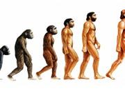 Thuyết tiến hóa bị loại khỏi sách giáo khoa Thổ Nhĩ Kỳ
