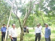 Thừa Thiên Huế sơ kết ngành KH&CN 6 tháng đầu năm 2017