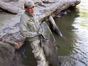 Clip: Cần thủ câu được cá da trơn khổng lồ trên sông
