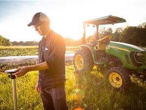 """3 cách """"giải cứu"""" nền nông nghiệp công nghiệp hóa"""