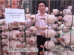 Sản xuất nấm tại Hải Phòng: Ứng dụng công nghệ nhân giống dạng dịch thể