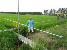 Nông dân sáng chế xuồng nhôm phun thuốc bảo vệ ruộng lúa