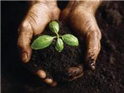 """Đổi mới công nghệ để """"cứu"""" đất, người và mùa màng"""