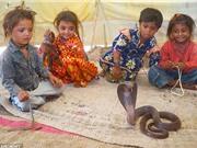 Khám phá cuộc sống của bộ tộc sống bằng nghề thôi miên rắn