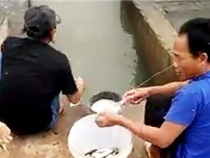 Clip: Dùng bột mì và chai nước, vẫn giật cá mỏi tay ở Phan Thiết