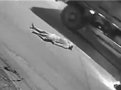 CLIP HOT NGÀY 24/7: Chết thảm vì tông vào xe container, lợn rừng xé xác trăn