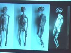 Tìm thấy 5 xác ướp người ngoài hành tinh ở Peru?