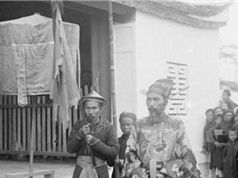 Triều đại phong kiến duy nhất của Việt Nam có Bộ Học