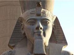 Những tiết lộ bất ngờ về pharaoh Ramses II