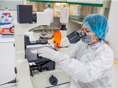Thuốc nội Pegfilgrastim phối hợp điều trị ung thư: Giúp tiết kiệm 60% chi phí điều trị