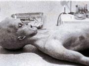 Những bằng chứng bất ngờ về sự sống của người ngoài hành tinh