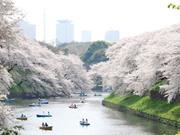 10 điểm đến không thể bỏ qua khi ghé thăm Thủ đô Tokyo
