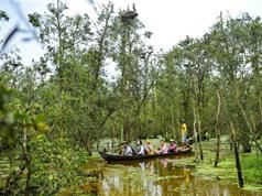 Mục sở thị vườn quốc gia hút khách du lịch bậc nhất Việt Nam