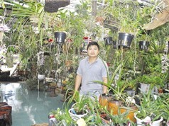 Tỷ phú vườn lan rừng tìm ra loài lan mới cho thế giới