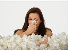 Một số bài thuốc trị viêm xoang mũi bằng tỏi cực kỳ hiệu quả