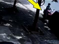 """CLIP HOT NGÀY 7/8: Suýt chết khi chạy xe kiểu """"mơ ngủ"""", hổ mang chúa giết bạn tình"""