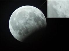 """Phát hiện vật thể lạ trong ảnh """"gấu ăn trăng"""" ở Hà Nội"""