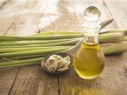 Sả ngâm dầu oliu - bài thuốc hay trị rụng tóc, trị gàu và kích thích mọc tóc