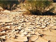 Khí hậu thay đổi, đi ra ngoài cũng có thể bị tử vong