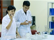Một số đơn vị nghiên cứu về giống lúa tại Việt Nam