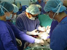 Mức độ ưu tiên khi lựa chọn người được nhận tạng