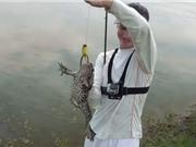Clip: Cần thủ trổ tài câu ếch bằng mồi giả