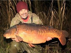 Con cá chép lớn nhất nước Anh qua đời