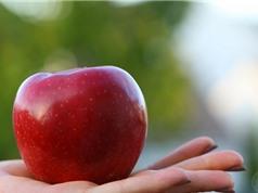 Một quả táo 9 lợi ích