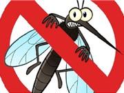 5 bước đơn giản nhất để đuổi muỗi