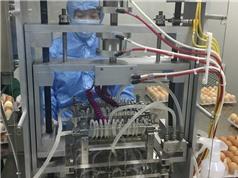 Sản xuất vắcxin cúm gia cầm 2 trong 1: Việt Nam làm chủ công nghệ sản xuất vắcxin nhị giá
