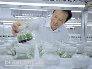 Phó Giáo sư - tiến sỹ Đặng Văn Đông: Nhà khoa học mê hoa