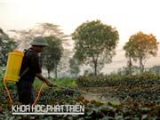Nguyên tắc  4 đúng khi sử dụng thuốc bảo vệ thực vật
