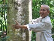 Lạ đời: Hơn 20 năm cực nhọc trồng 200 ha rừng nhưng quyết không... bán gỗ