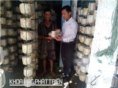 Đà Nẵng: Cứu nấm để giữ nghề cho dân