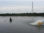 Liên kết theo mô hình HTX nuôi cá VietGAP, doanh thu 11 tỷ đồng/năm