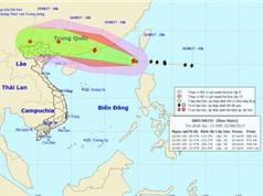 Ban Chỉ đạo Trung ương về phòng chống thiên tai yêu cầu chủ động ứng phó với bão Hato