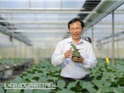 Tìm cách giữ nguồn gene kỳ hoa dị thảo