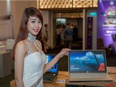HP giới thiệu 3 laptop mới ở Việt Nam, giá từ 12,3 triệu đồng