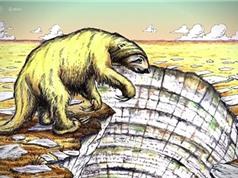 Phát hiện hóa thạch của một con lười khổng lồ tại Mexico
