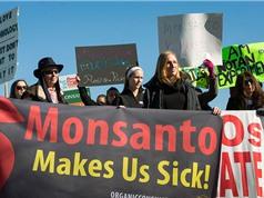 """Monsanto - """"ông kẹ"""" về bản quyền hạt giống"""