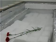 Gửi xác người đông lạnh vào vũ trụ để tái sinh